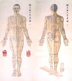 中国医学の実践法~病院での利用...